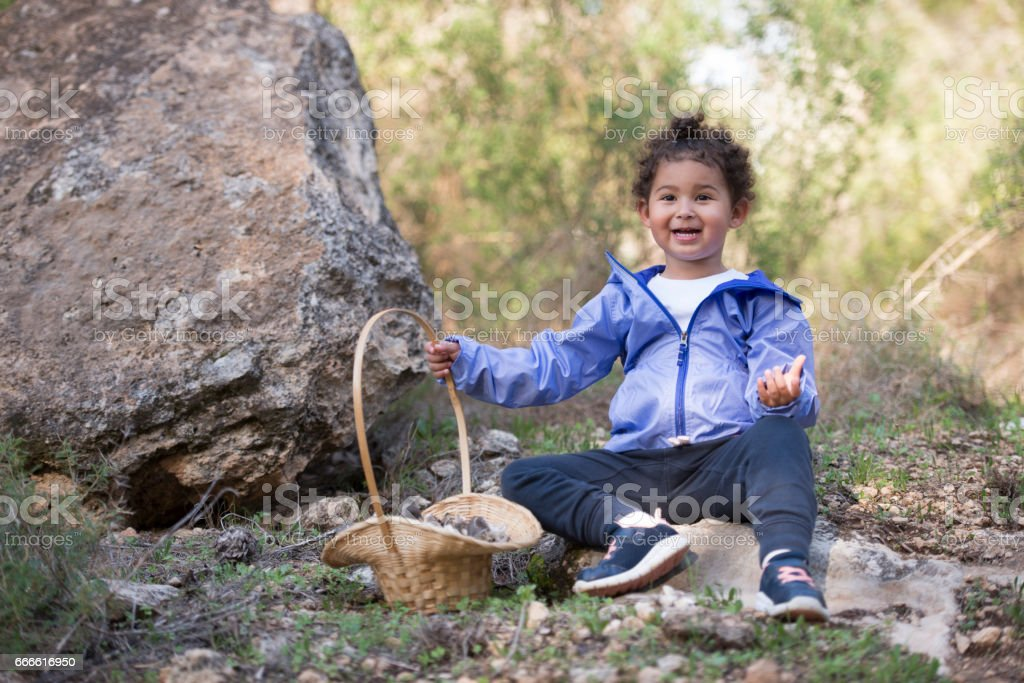 Happy child collecting edible mushrooms in forest. stock photo