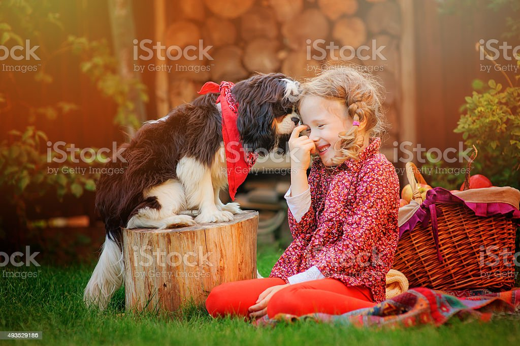 happy child girl playing with her dog in autumn garden stock photo