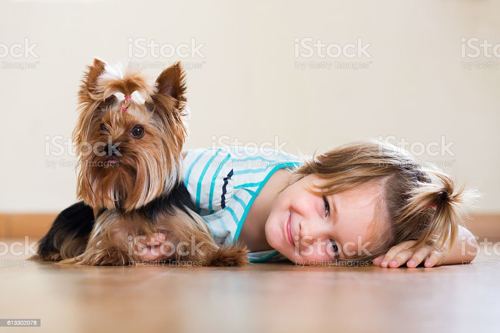 Happy child playing with Yorkie stock photo
