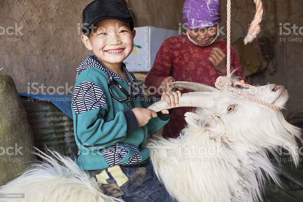 Happy Chinese boy riding sheep indoor stock photo