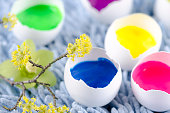 Happy colorful Easter shells and spring flowres