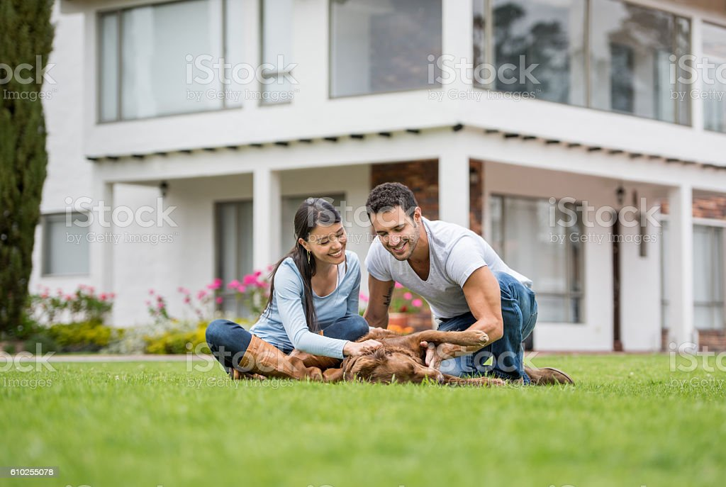 Happy couple playing with a dog stock photo