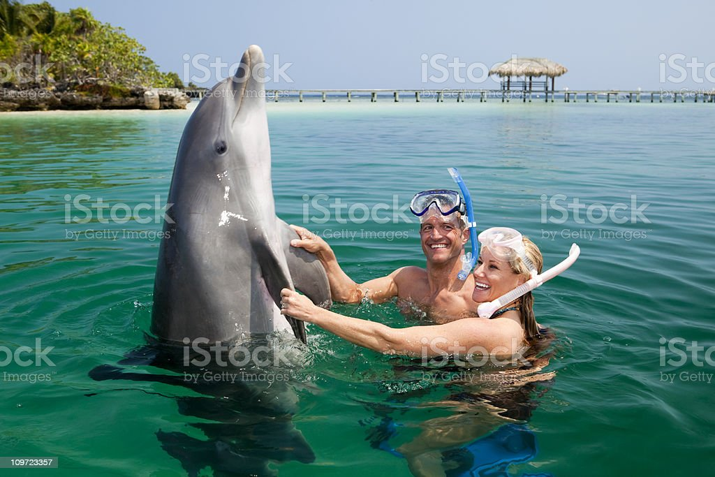 Happy couple playing with dolphin in tropical sea stock photo