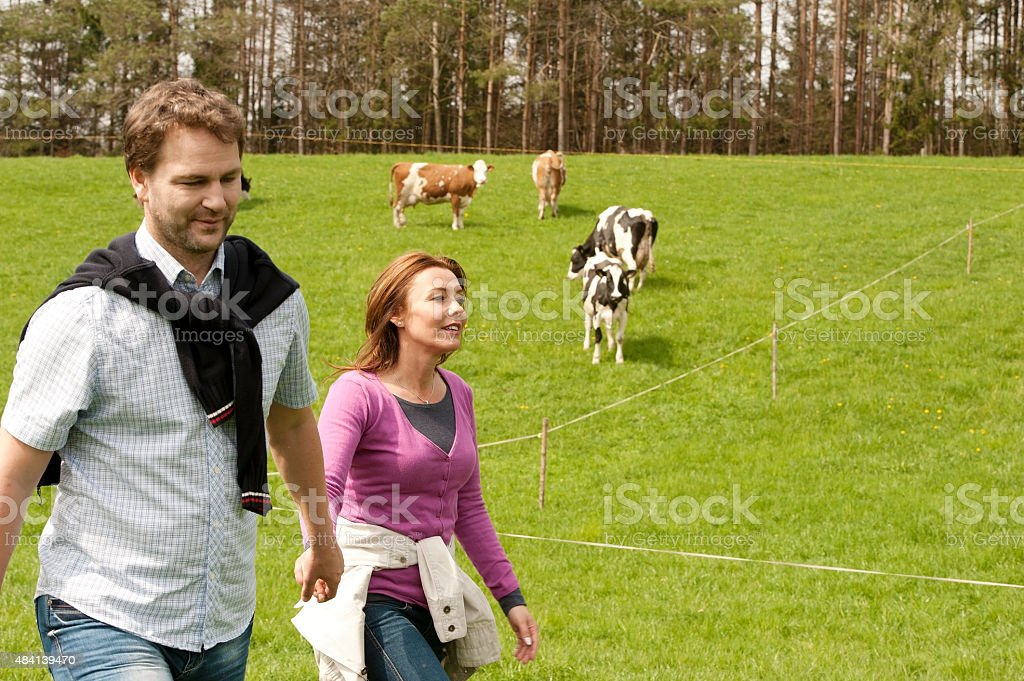 Happy couple walking on a meadow near pasture stock photo