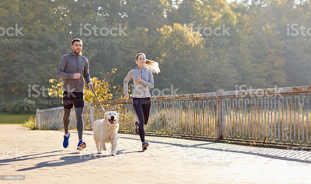 happy couple with dog running outdoors stock photo