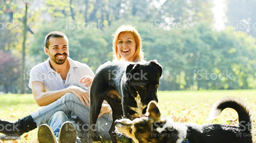 Happy Couple With Dogs enjoying sunny day in park stock photo