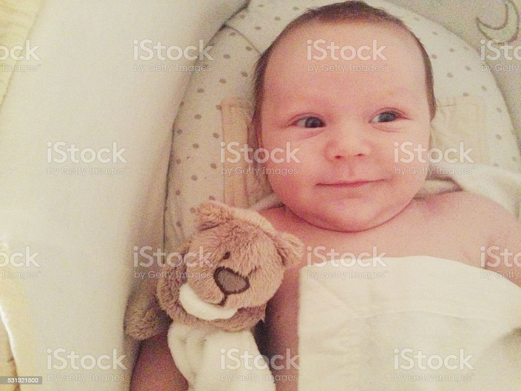 Happy Cute Newborn Baby Boy in Moses Basket stock photo