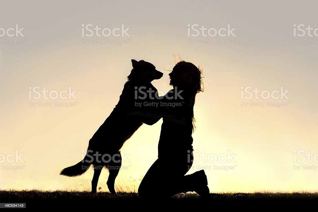 Happy Dog Jumping up to Greet Woman Silhouette stock photo