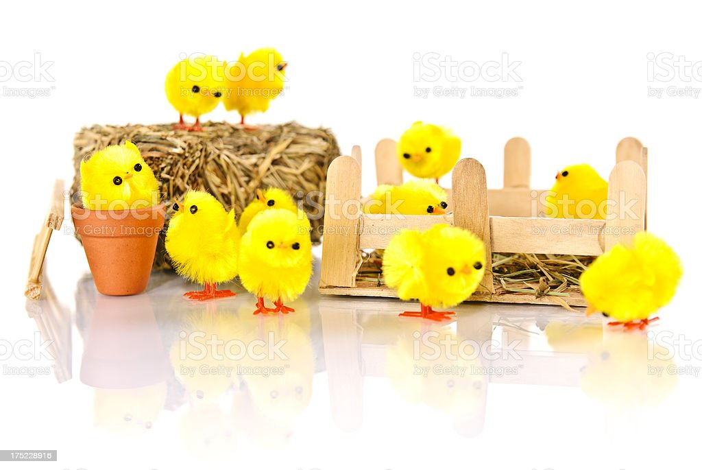 Happy easter chick royalty-free stock photo