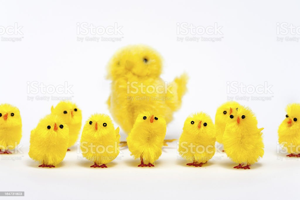 Happy Easter Chickens 4 royalty-free stock photo