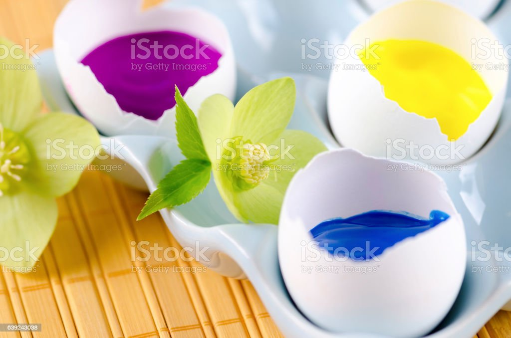 Happy Easter colorful eggs shells and hellebore flowers stock photo