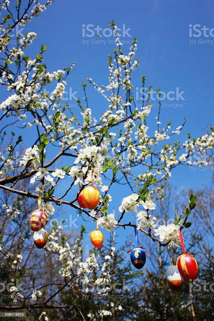 Happy Easter, Easter eggs in the blooming plum tree stock photo