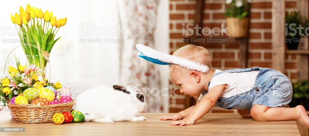 happy easter! happy funny baby boy playing with bunny stock photo
