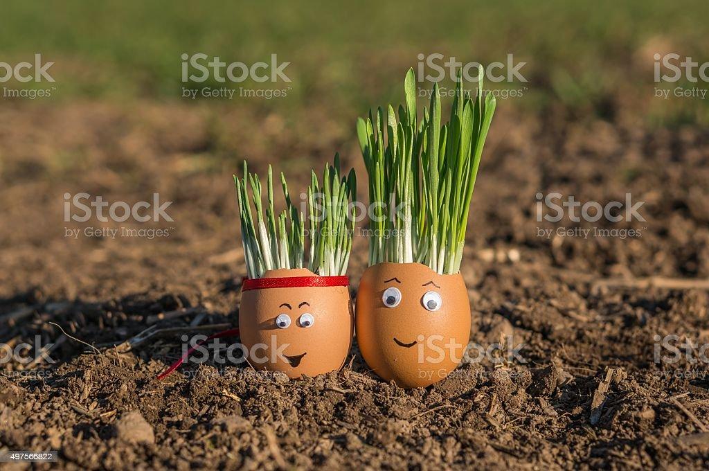 Happy eggs stock photo