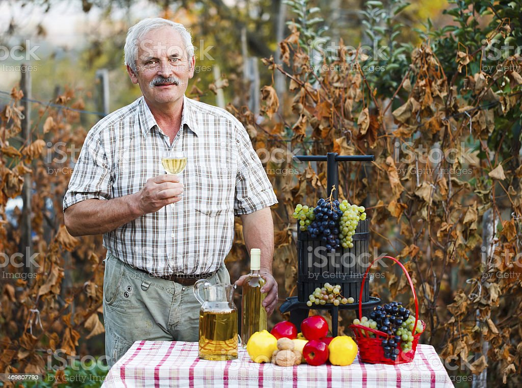 Happy elderly man with crops royalty-free stock photo