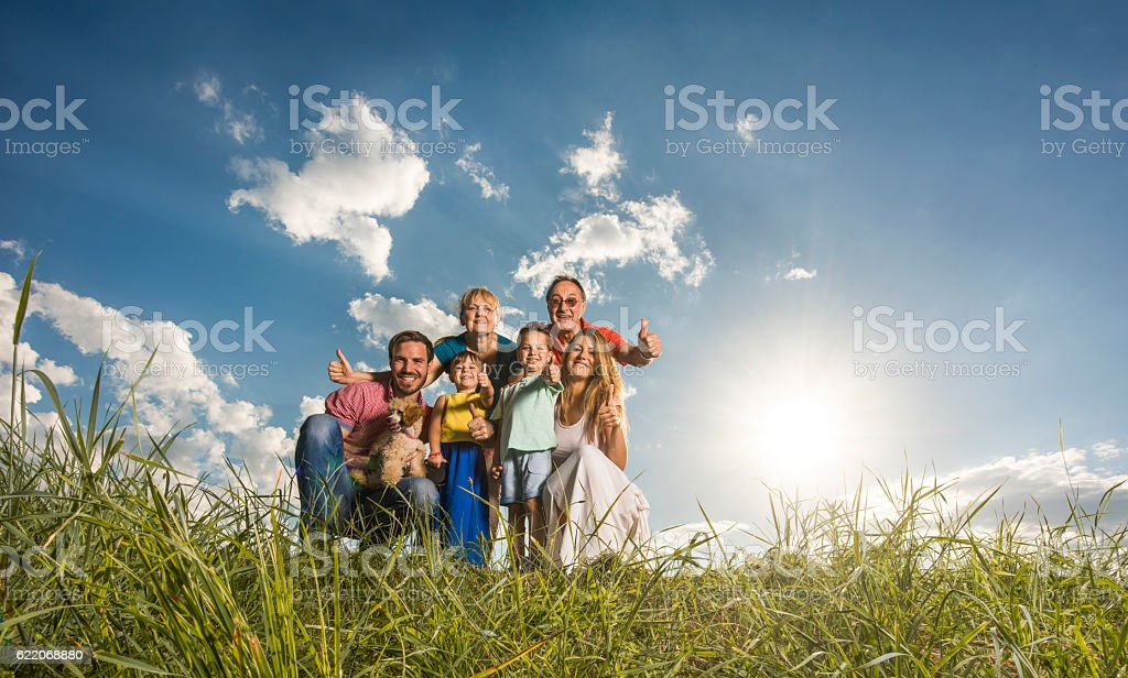 Happy extended family showing thumbs up in a meadow. stock photo