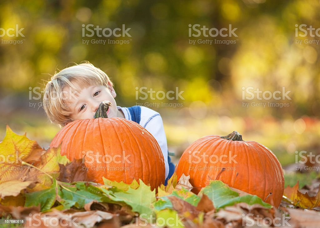 Happy Fall Ya'll stock photo