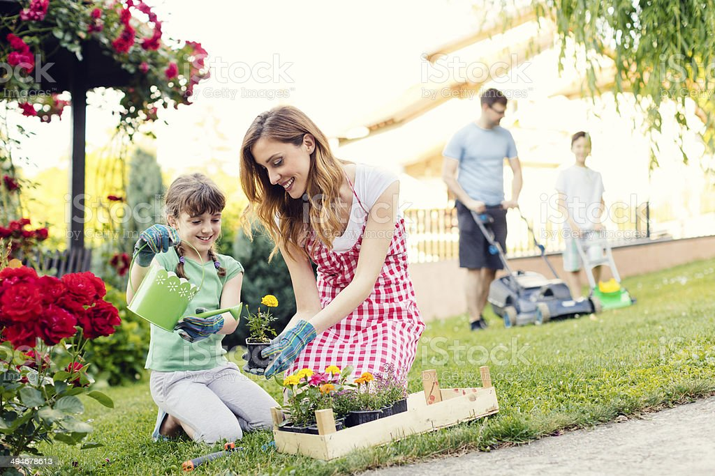 Happy Family Gardening in a Backyard Together. stock photo