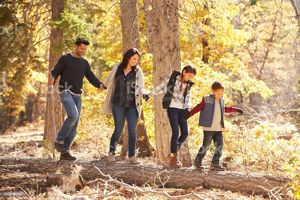 Happy family hold hands balancing on fallen tree in stock photo
