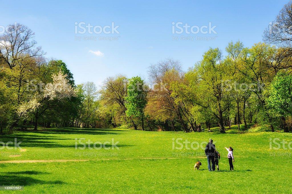 Happy family in park royalty-free stock photo
