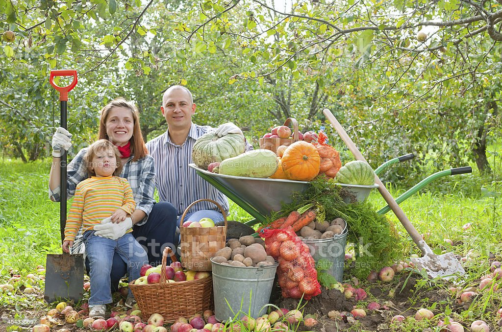 Happy  family with vegetables harvest stock photo