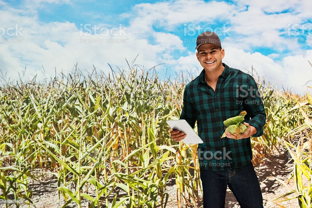 Happy farmer holding corn and using tablet outdoors stock photo