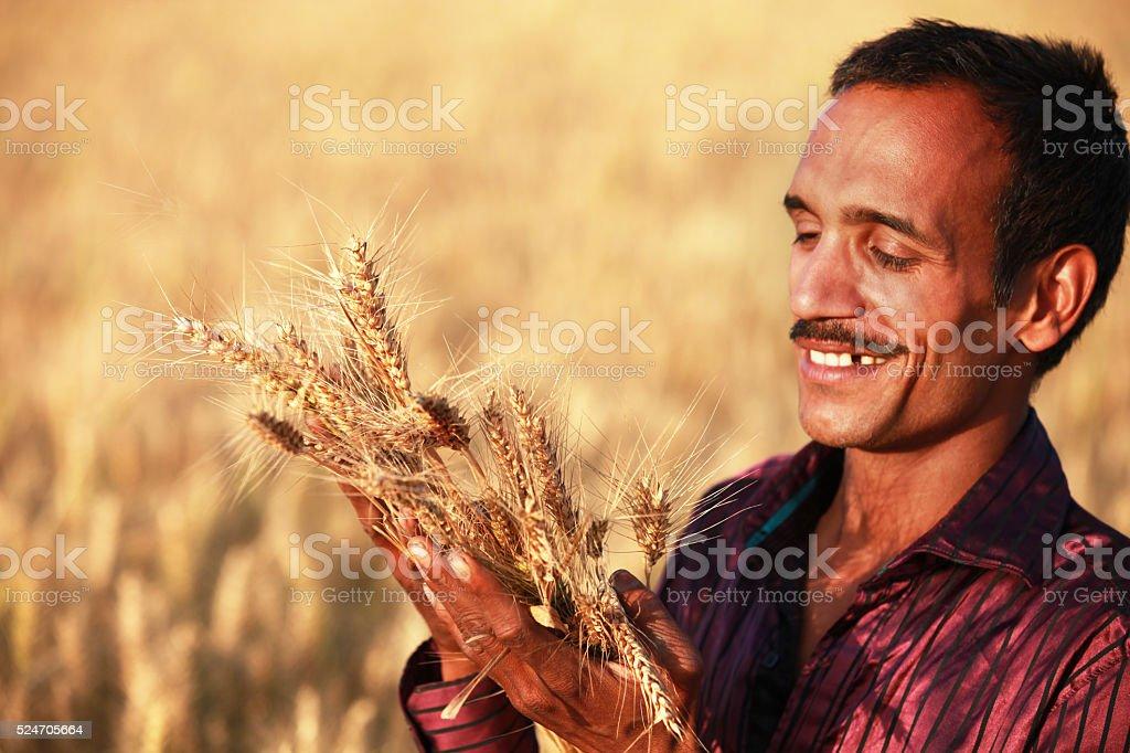 Happy farmer holding ear of wheat stock photo