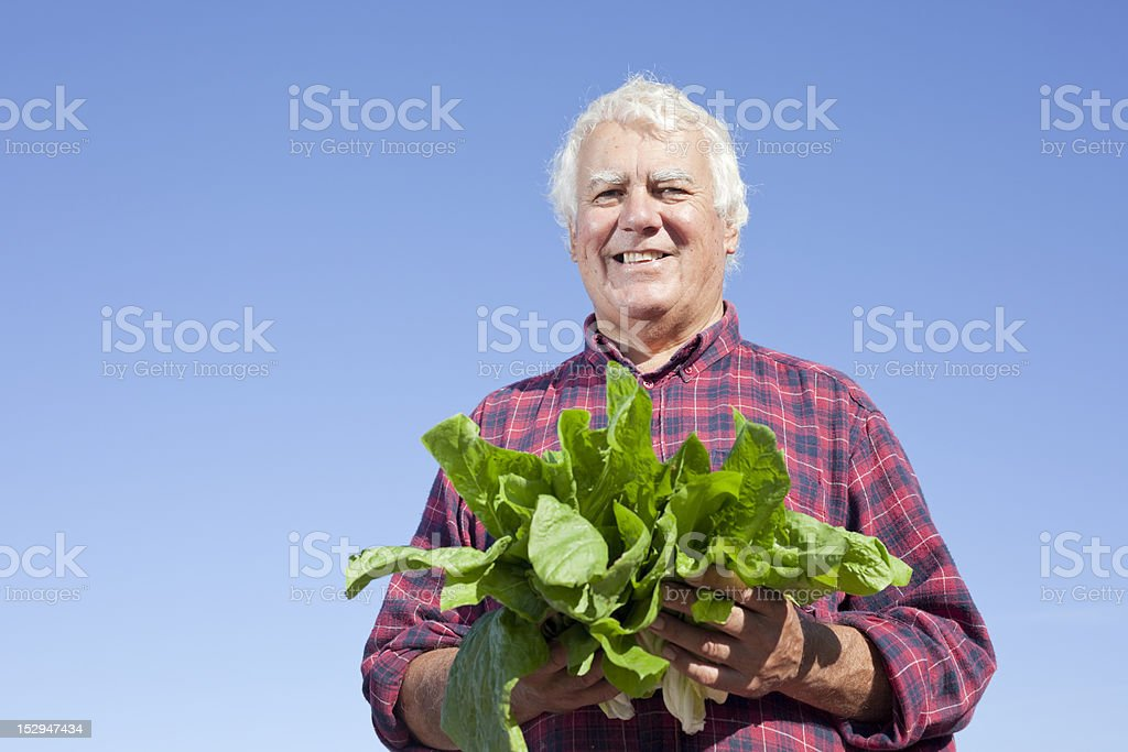 Happy farmer. royalty-free stock photo