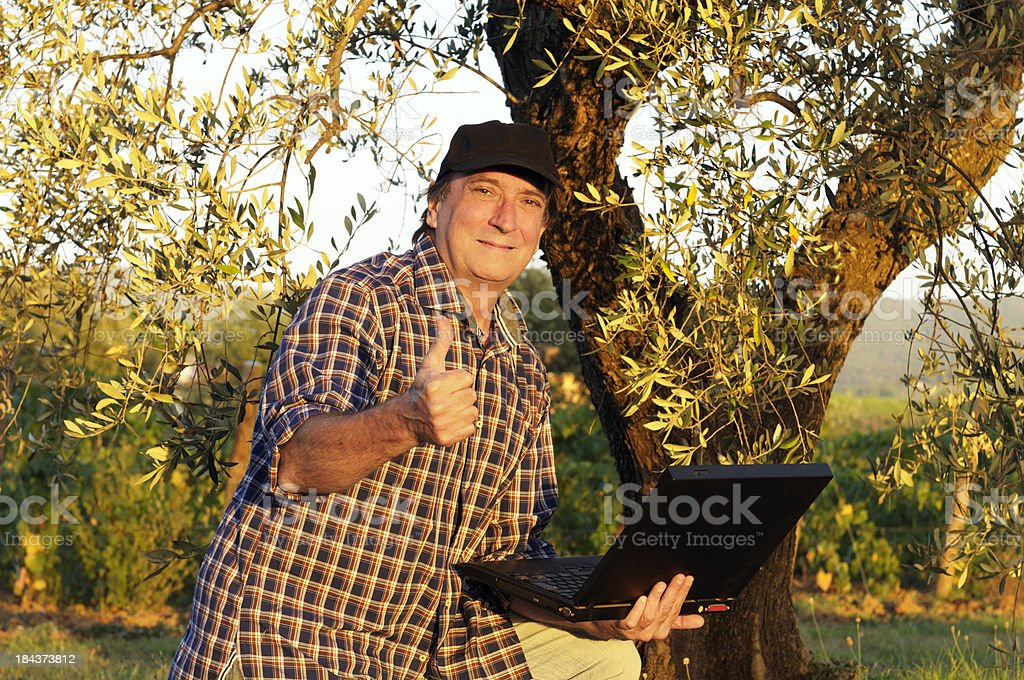 Happy Farmer Using PC under Olive Tree at Sunset royalty-free stock photo