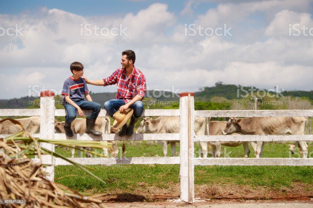 Happy Father And Son Smiling In Farm With Cows stock photo