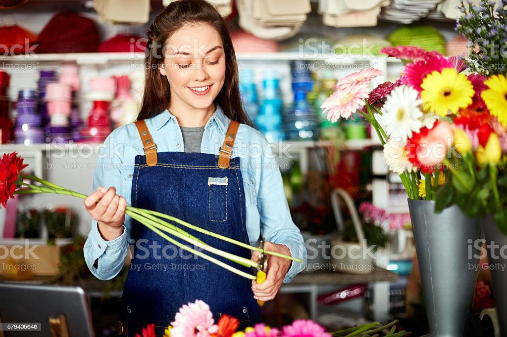 Happy florist cutting stems of Gerbera daisies in shop stock photo