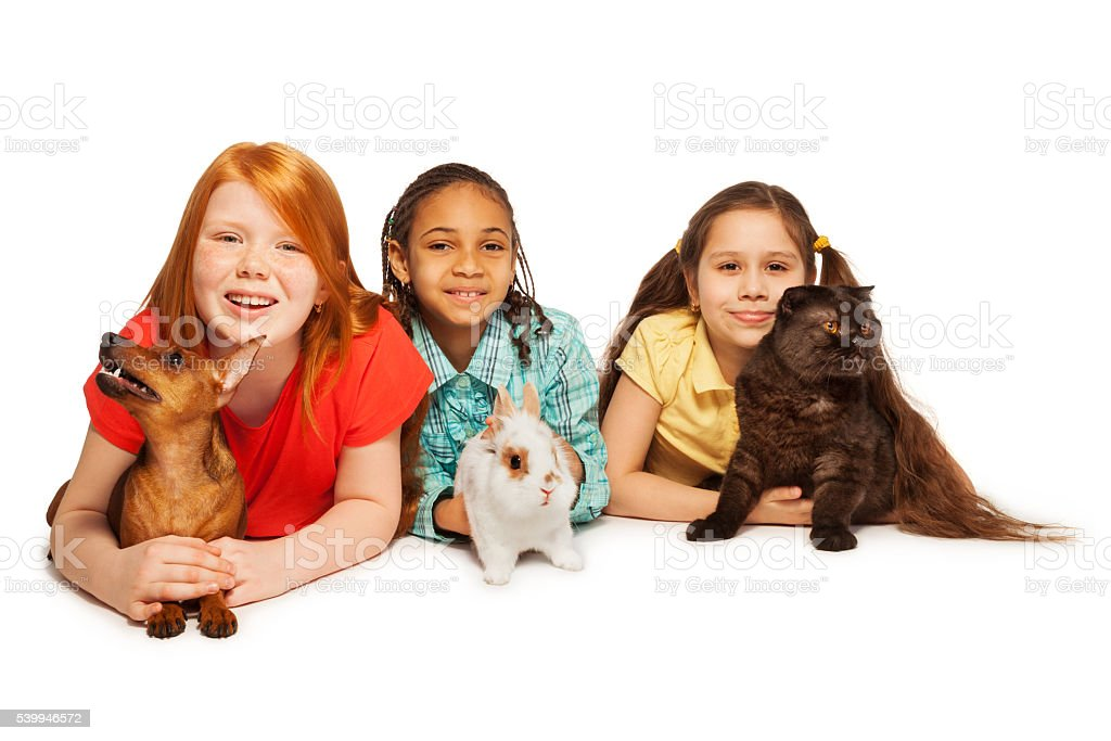 Happy friends and their pets stock photo
