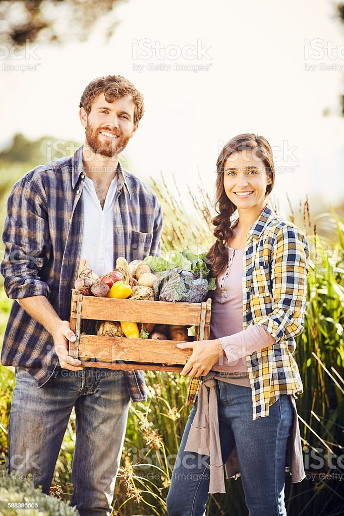 Happy friends carrying organic vegetables at farm stock photo