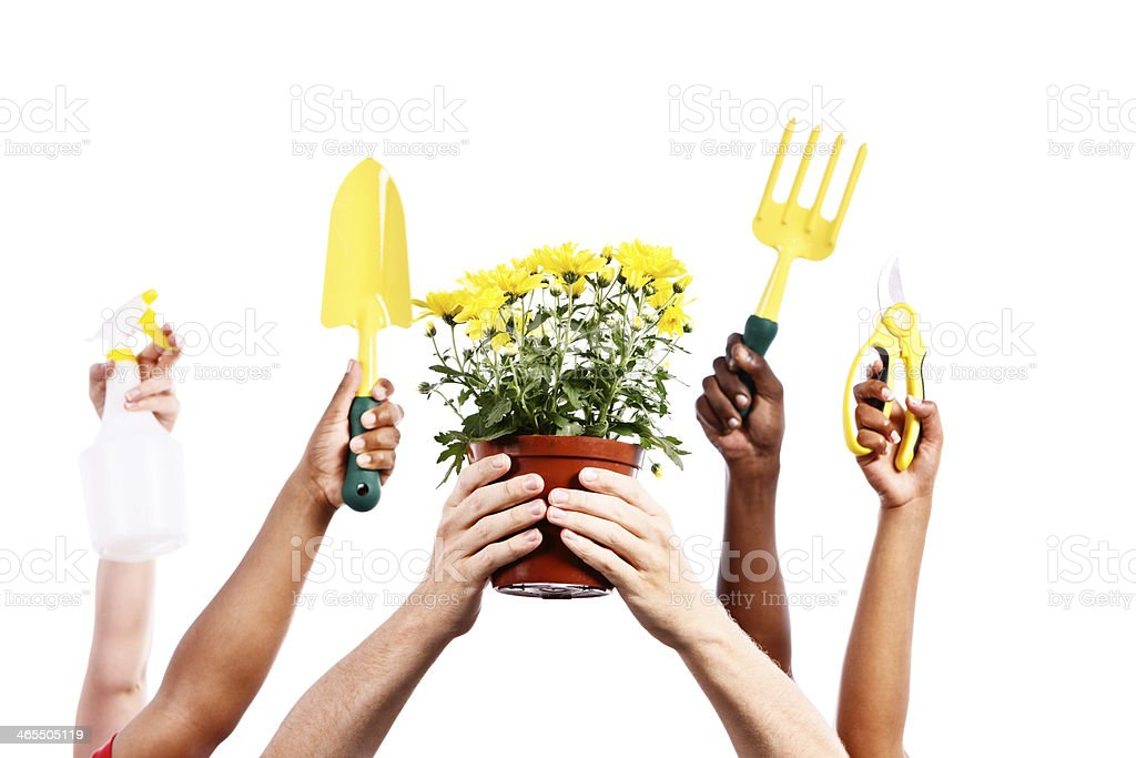 Happy gardening! Hands with garden tools and potted plant royalty-free stock photo
