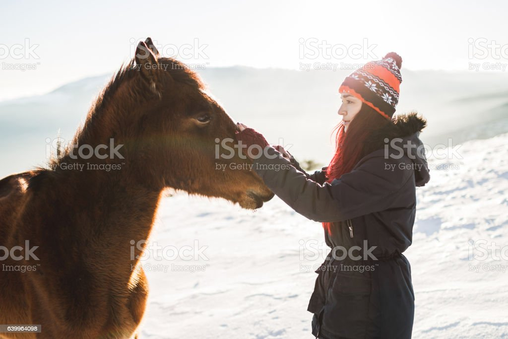 Happy girl gently stroking horse in shiny sunlight. Winter mountains stock photo