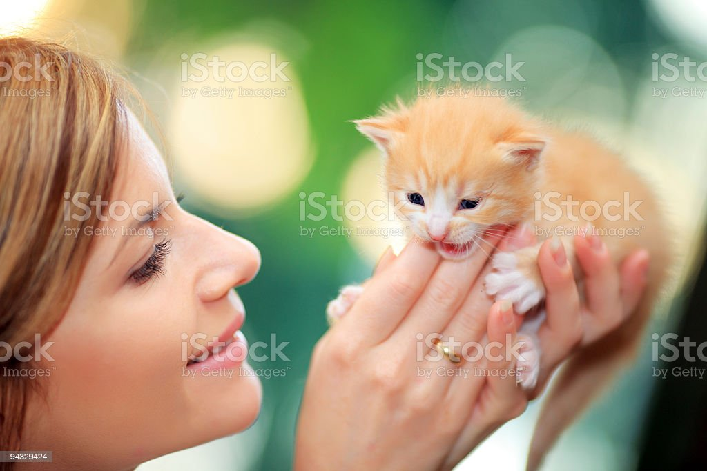 Happy girl hugging her cute cat. stock photo