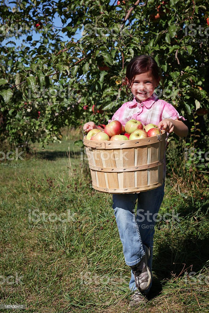 Happy girl with apples royalty-free stock photo