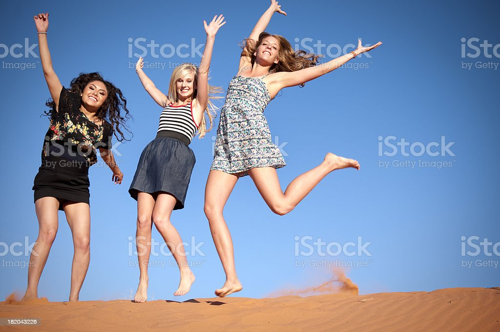 Happy Girlfriends royalty-free stock photo