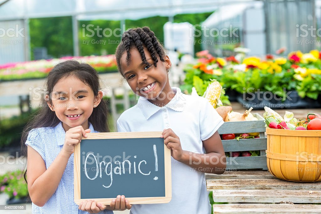 Happy girls holding organic sign together stock photo