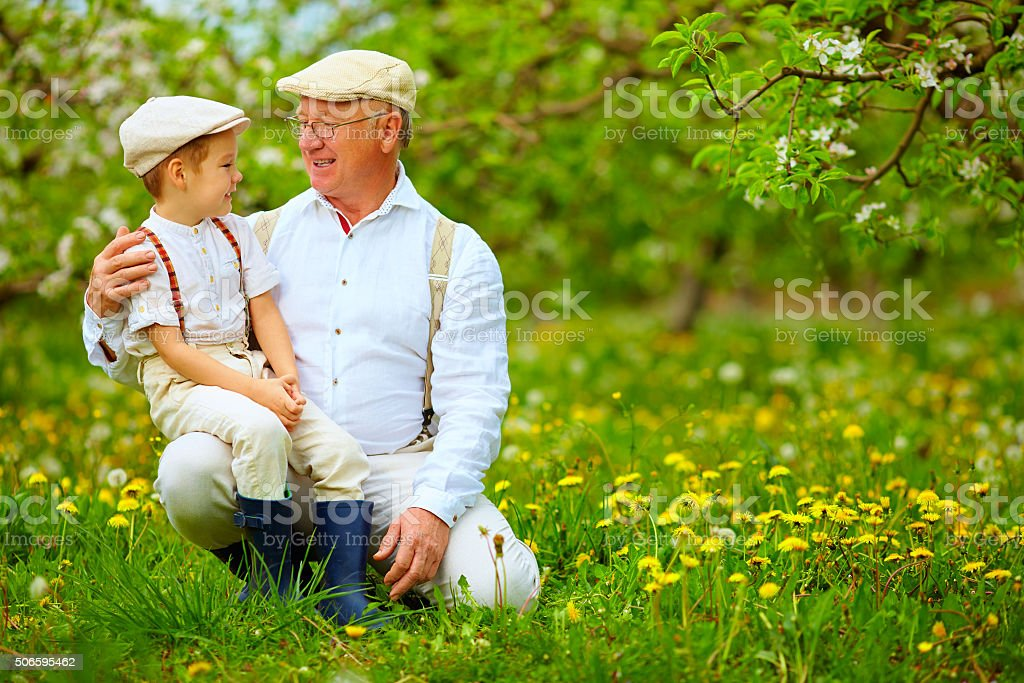 happy grandfather and grandson in spring garden stock photo