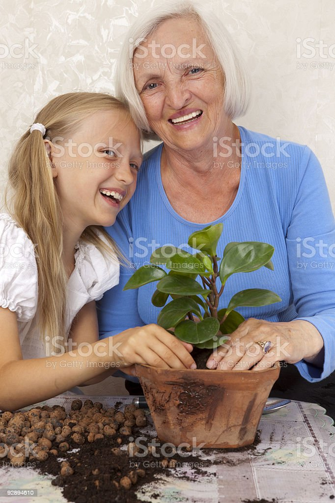 Happy Grandmother and Granddaughter Planting a Flower in Flowerpots. stock photo
