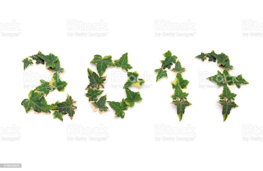 Happy green year 2017 stock photo