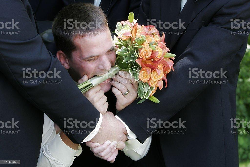 Happy Groom royalty-free stock photo