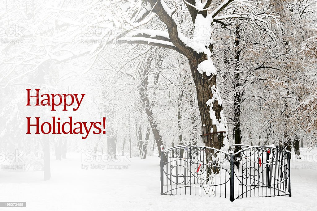 Happy holidays text on background of snow trees stock photo