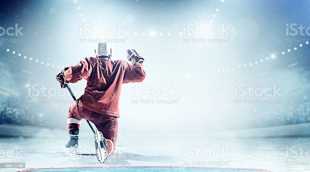View of professional ice hockey player celebrating during game in...