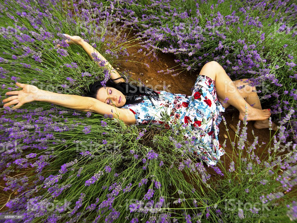 Happy in Lavender royalty-free stock photo