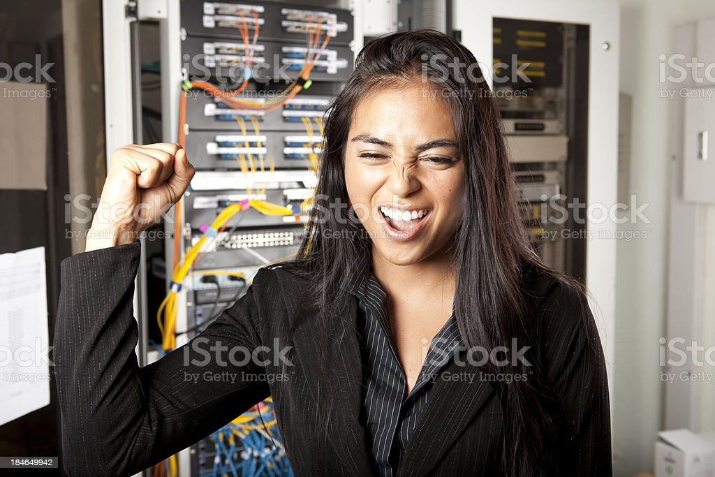 Happy IT Proffessional royalty-free stock photo