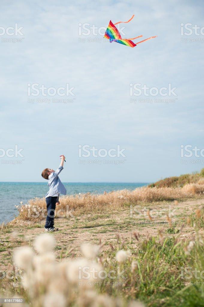 happy ittle boy holding flying kite on sea background stock photo