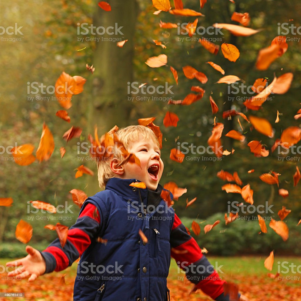 Happy Little Boy Playing with Colorful Autumn Leaves Outdoors stock photo