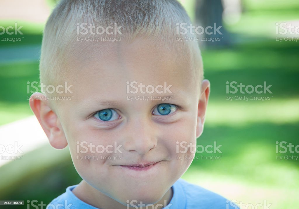 Happy little boy with blue eyes and dimples royalty-free stock photo